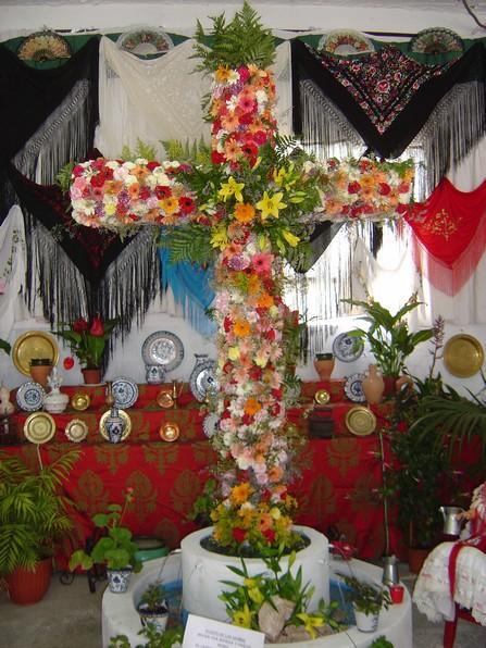 Cruces de Mayo Agua33