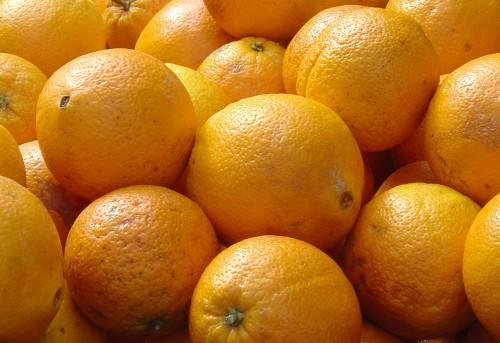 Oranges up close