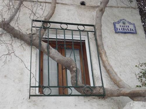 Calle La Granja Buganvilla